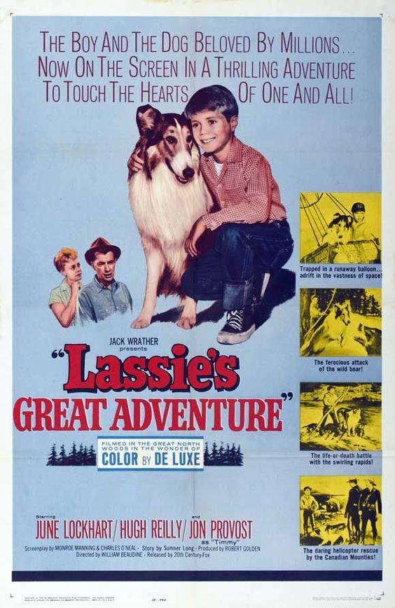 Lassie's Great Adventure (1963)